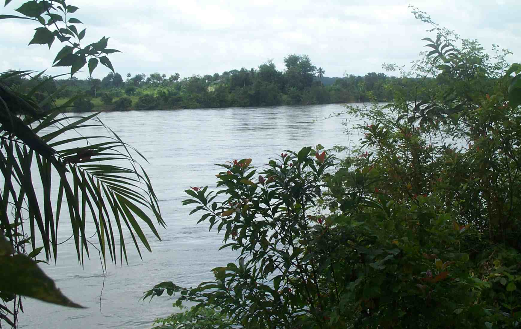Saint Paul River at White Plains, Liberia, towards the end of the rainy season